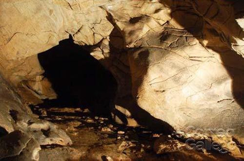 cueva triacastela